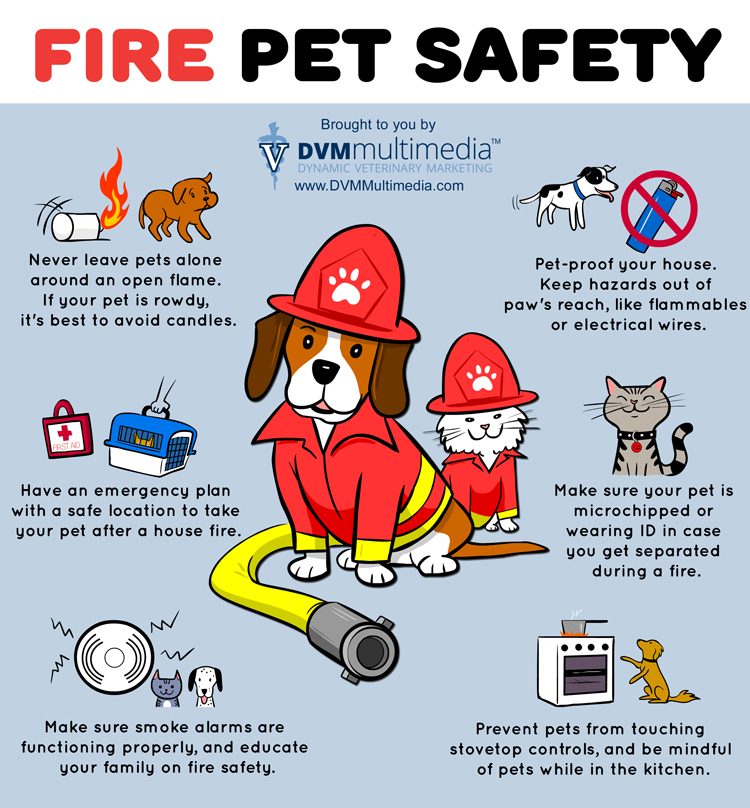 Fire Safety River Bank Veterinary Clinic